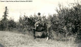 Portrait of one man in uniform on horseback. He is in a field with trees in the background and he...