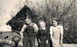 The Karvonen children with their dog, Hollow Lake, Alberta, Left to right: Eino, Edward and...