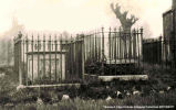 Gravestones surrounded by an ornate metal fence, [Alberta]. Note on back of photograph reads...