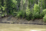 Erosion - Athabasca River