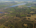 Boreal forest and Land clearing near Steele -4