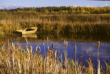 Old Boat on a Pond near Athabasca