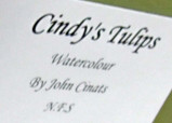 Description of Cindy's Tulips
